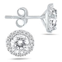 1 1/4 Carat Diamond Halo Earrings in 14K White Gold