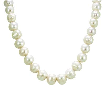 12-12.5MM White Freshwater Cultured Pearl Necklace
